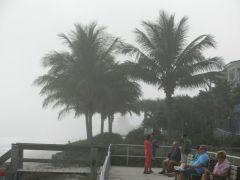 Foggy at Vero Beach