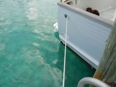 That clear Bahamian water!