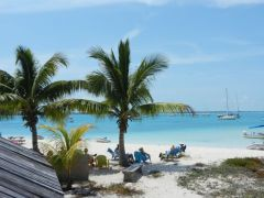 Chat 'n Chill bar & beach
