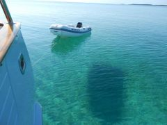 Shadow in 15 ft of water!