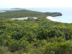 Flamingo Cay northward