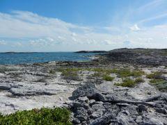 Johnson Cay