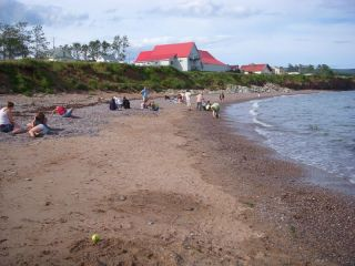Agate hunting at L'Anse-a-Beaufils