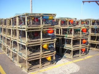 Lobster pots ready to go