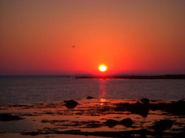 Sunset Clark's Harbor