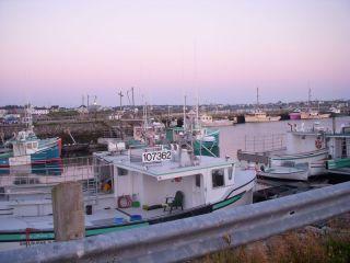 Fishing fleet- Clark's