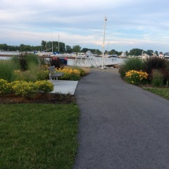 Trent Port Marina Grounds