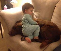 Patient pup!