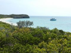 View from Flamingo Cay