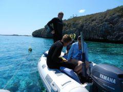 Snorkeling Rocky Dundas