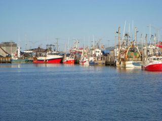Fishing fleet Riviere au Renaud