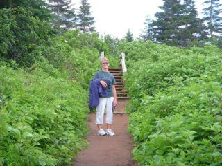 Trail to gannet colony- 3km