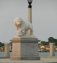 One of the Lions