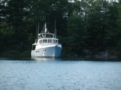 Stern shore tie- Echo Bay